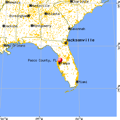 Pasco County, FL map from a distance