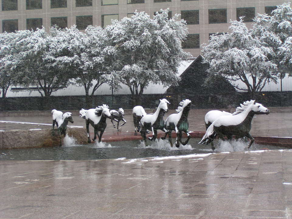 Irving, TX : Mustangs at Las Colinas During Snowstorm of February 14, 2004
