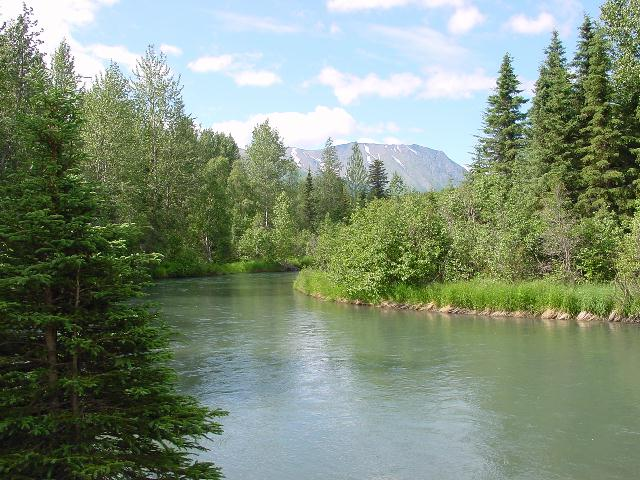Anchorage, AK : Quartz Creek - 80 miles south of Anchorage, AK