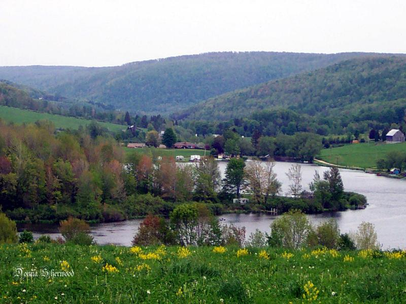 Dushore pa saxes pond near the town of dushore pa for Fishing jobs near me