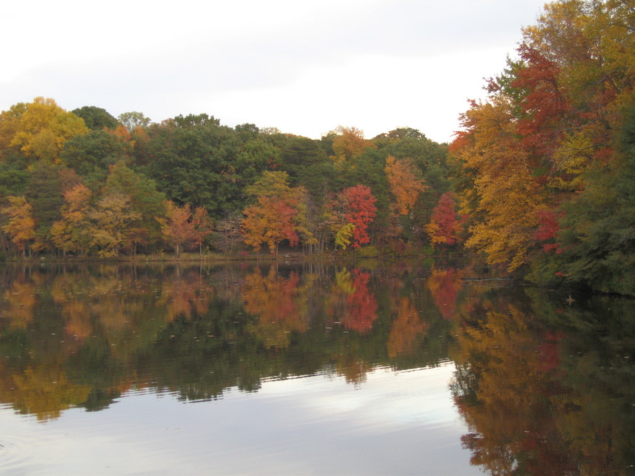 Greenbelt, MD: Greenbelt lake during the fall