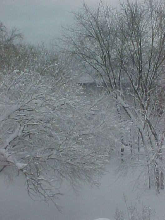 Perry Hall, MD: SNOW STORM IN PERRY HALL, MARYLAND