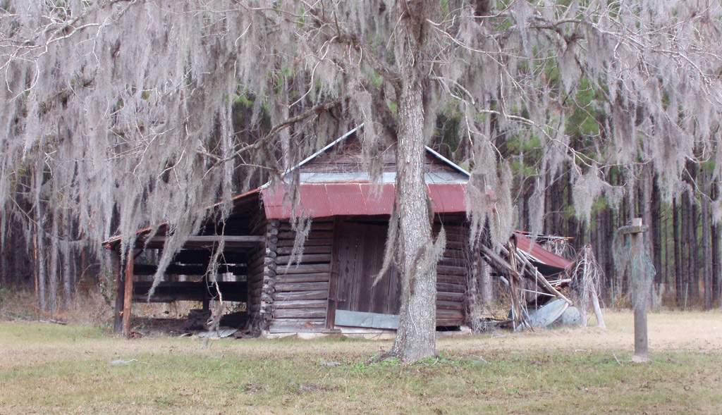 Live Oak, FL: Old Log Shed near Live Oak, FL... '06