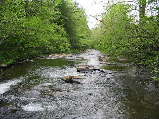 Tellico Plains, TN: Tellico River, Tellico Plains, Tn