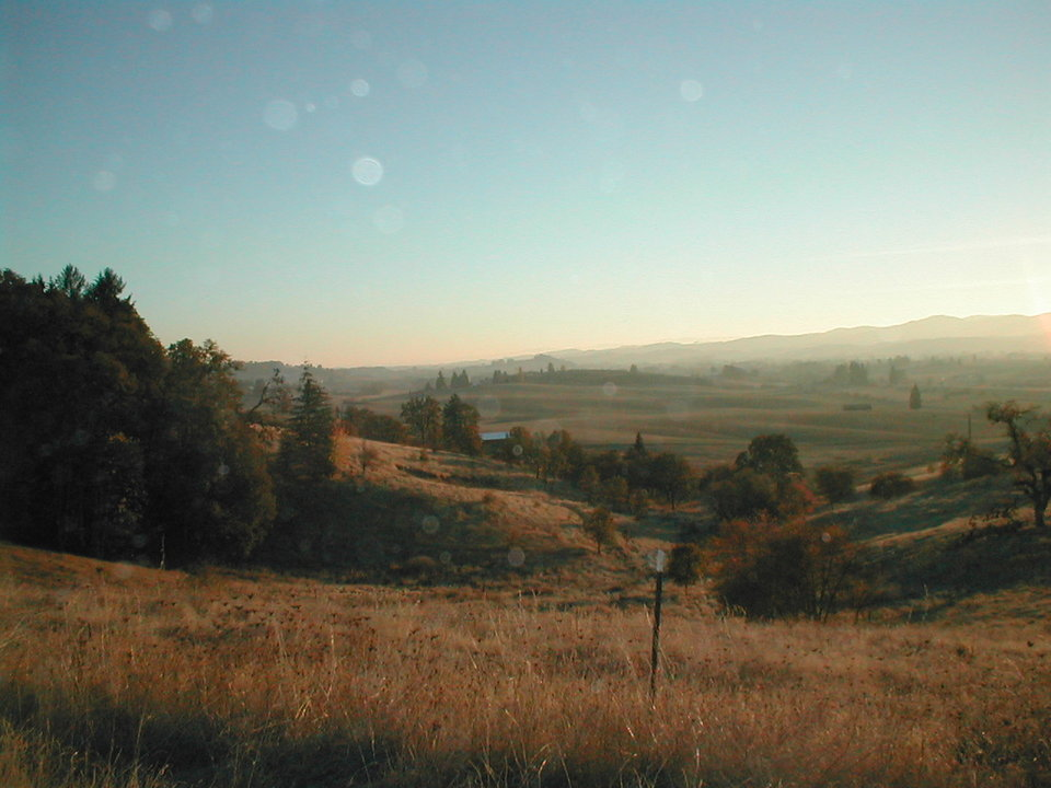 Yamhill, OR: Fall view of the valley just north of Yamhill