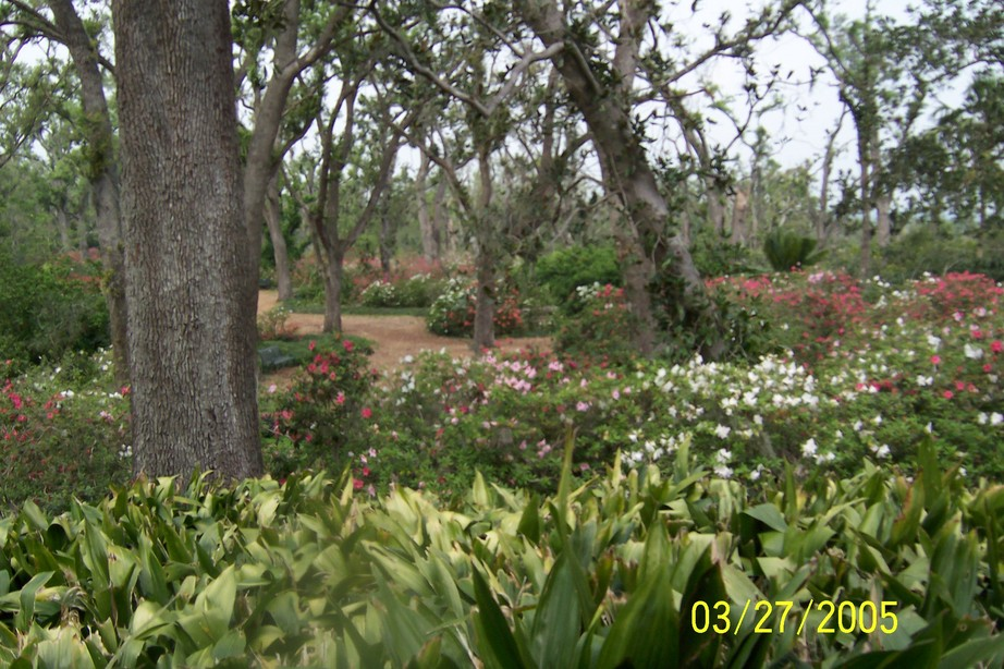 Lake Wales, FL: Bok Tower Gardens