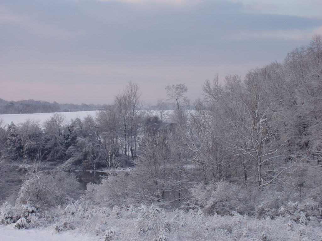 Culpeper, VA: Lake Pelham's 1st snowfall of 2006
