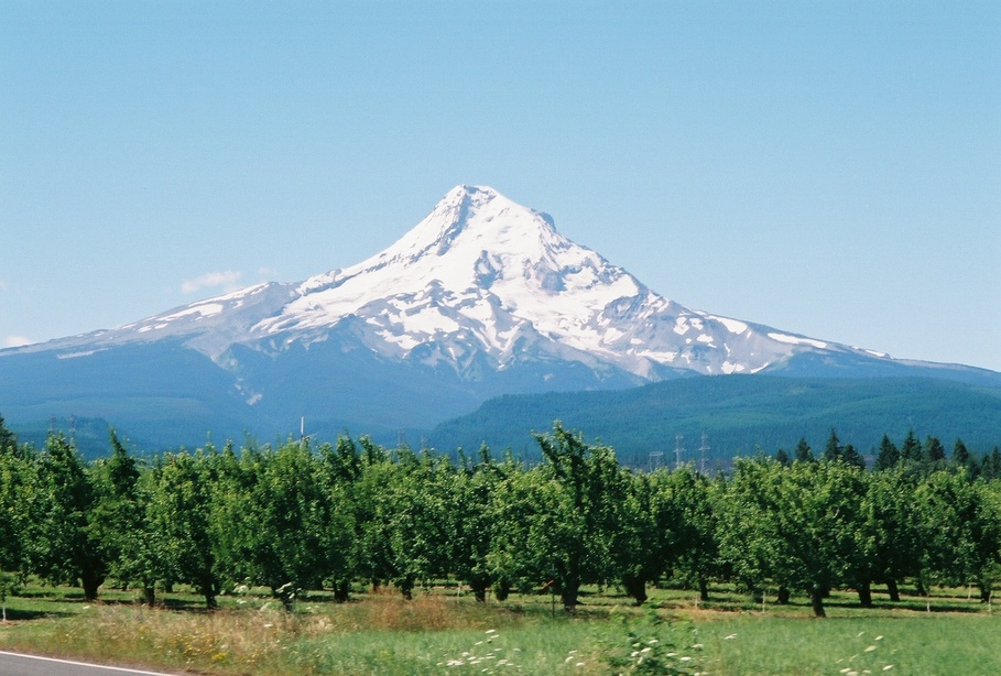 Parkdale, OR : Mt. Hood as seen from Parkdale, Oregon