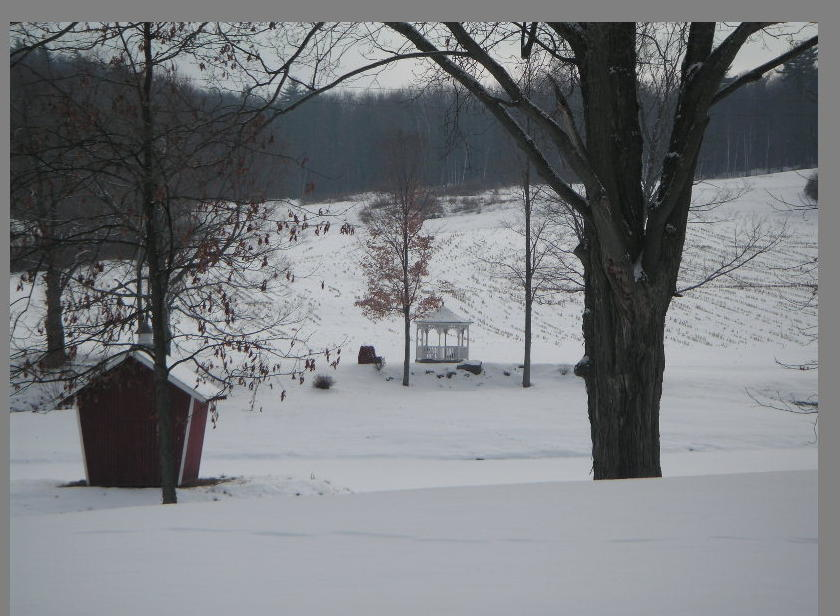 Greenwich, NY: a wintry farm landscape in Greenwich NY