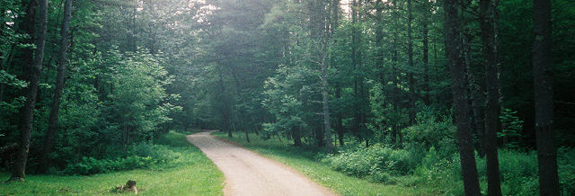 Saco, ME : Path in Saco, ME