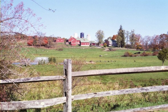 Sherman, CT: Happy Acres Farm