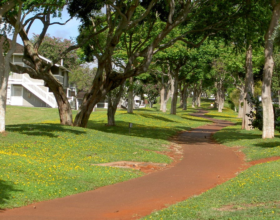Waipio, HI: Waipio's quiet bike path.