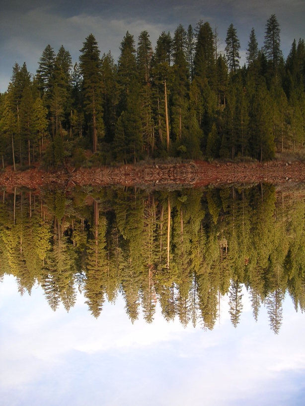 Foresthill, CA : Perfect Reflection at Sugar Pine Resevoir