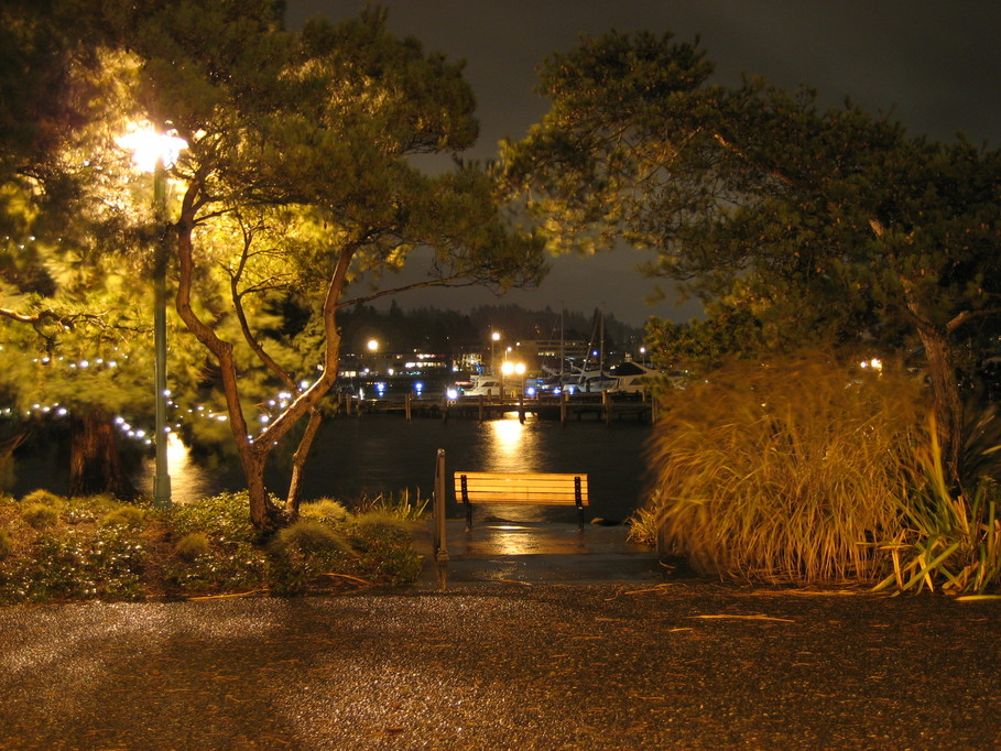 Kirkland WA Night Shot At
