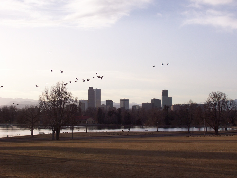 Denver, CO: Downtown from city park