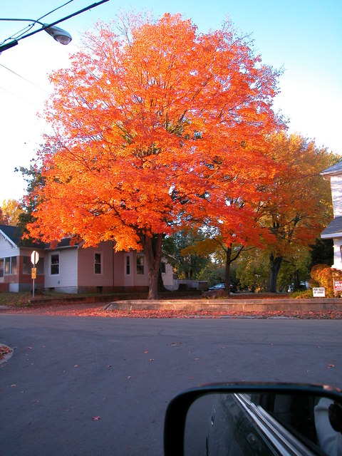 Farmington, MO : Autumn of 2003