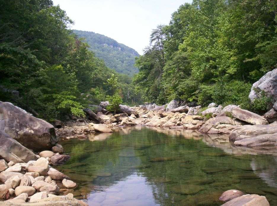Soddy-Daisy, TN : Soddy-Daisy Swimming Creek
