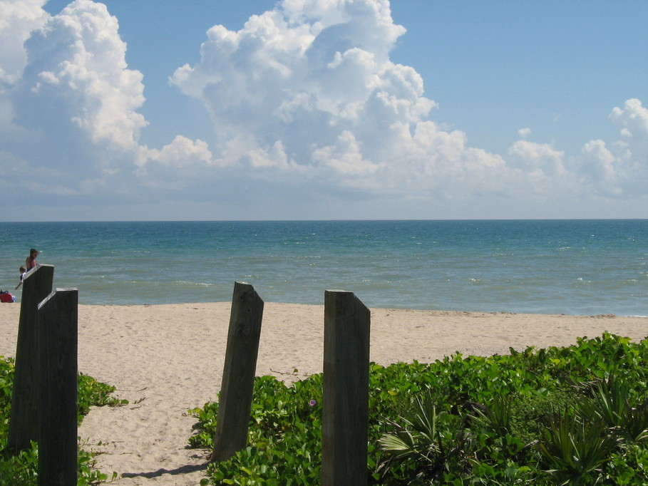 Jensen Beach, FL : Sea Turtle Nesting Cove-Jensen Beach