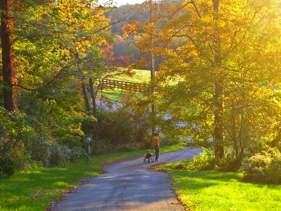 Millbrook, NY : Millbrook Countryside in October