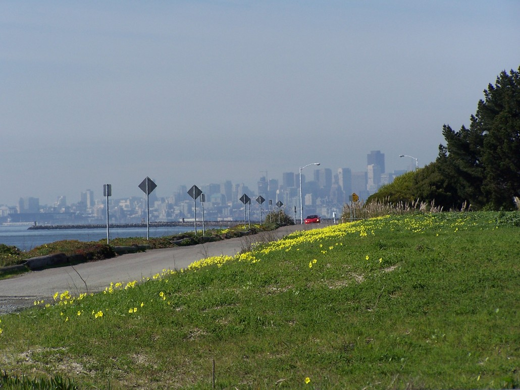 Alameda, CA : Looking west to S.F. from Bellena Blvd.