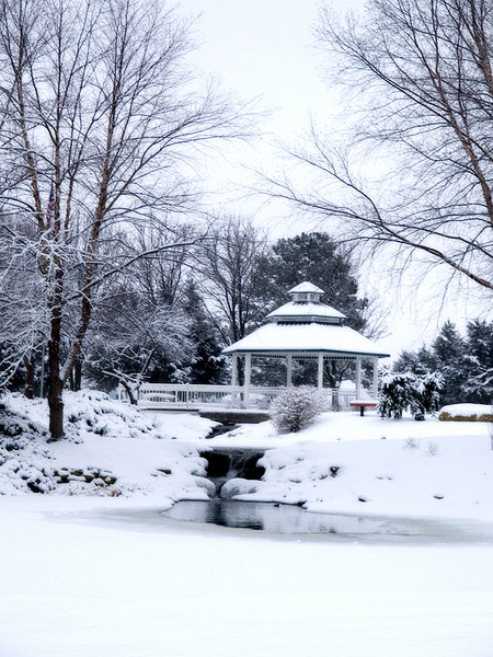 Topeka, KS : Ensley Garden in winter