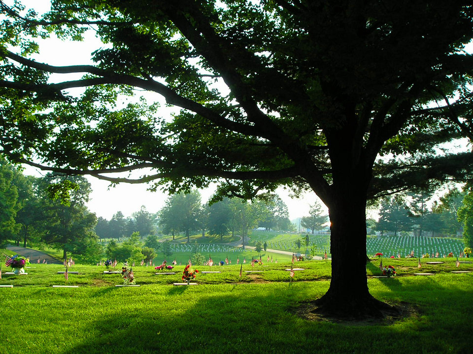 Johnson City, TN : Sunlit graves of the patriotic at the Johnson City Veterans Cemetery,