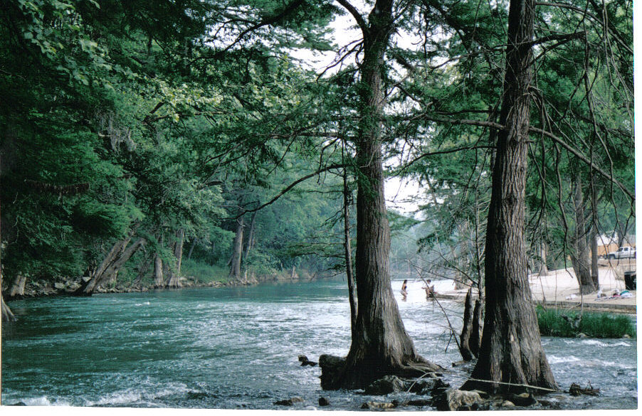 Austin, TX : Guadelupe River in historic Gruene, TX; popular rafting river!