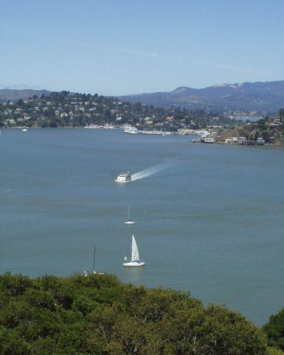 Tiburon, CA : Tiburon Ferry from Mt. Livermore