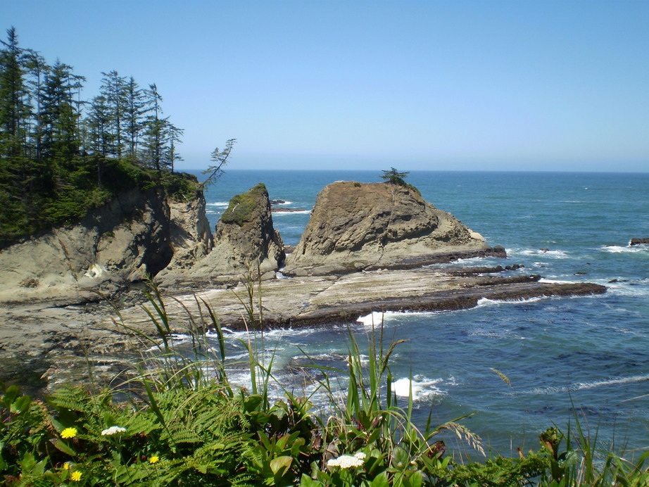 Coos Bay, OR : Picture of coast, on the way to shore acres