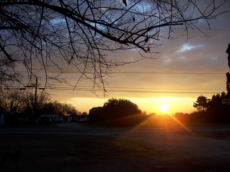 Riverdale, CA : Sunrise from the front yard-
