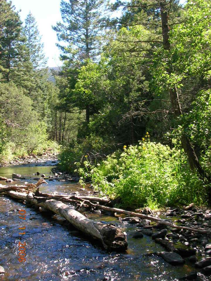Eagle Nest, NM : Stream in Cimmaron Canyon