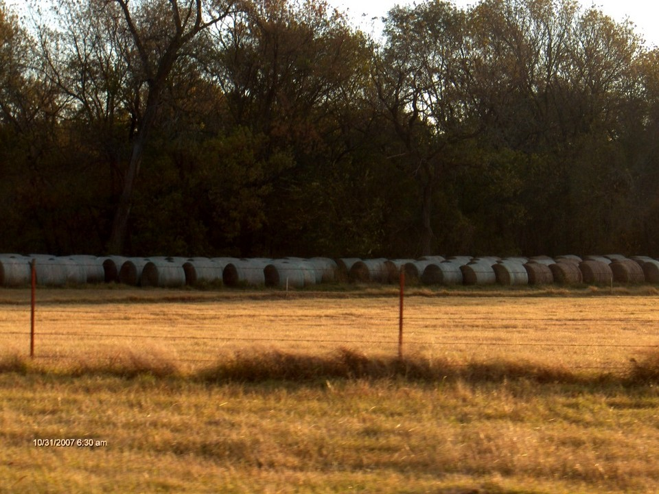 McLoud, OK : Cylinder shaped bales of hay, on a farm north side of McLoud