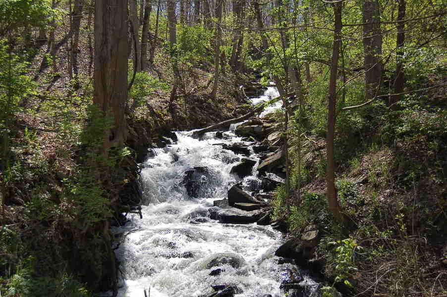 Maineville, OH : Hidden Stream (Maineville, Ohio)