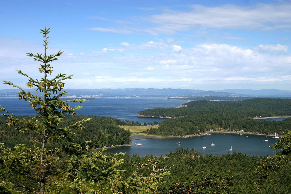 San Juan, WA : View from Young Hill, San Juan Island, WA