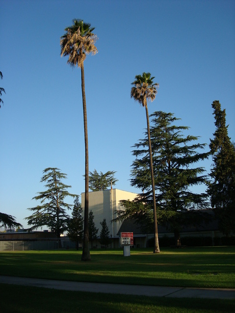 Patterson, CA : Infront the Patterson High School, that was my last day in Patterson...