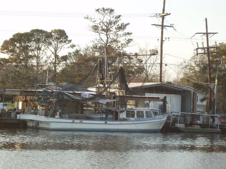 Chauvin, LA : Boat in the water of Chauvin,Louisiana