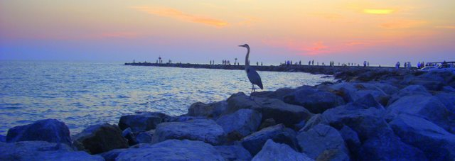 Venice, FL : Venice Jetties at Sunset