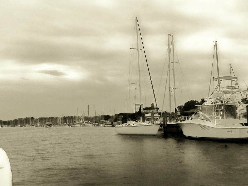 Deale, MD : Harbor Cove Marina