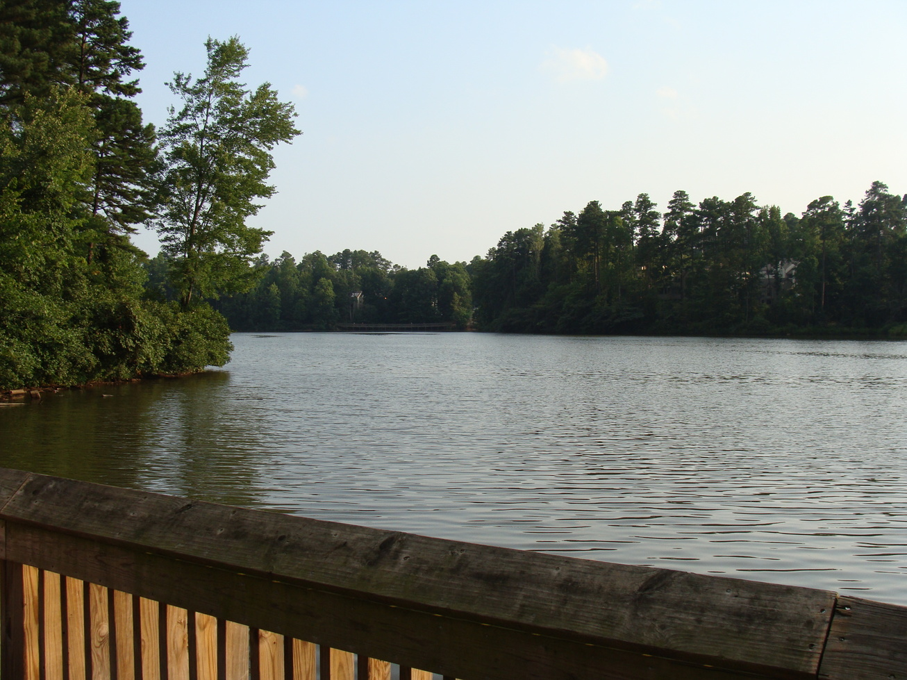 Alliance, NC : Summer walks around Lake Lynn