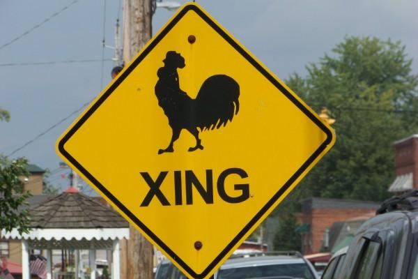 Blue Ridge, GA : A rooster crossing sign- in the middle of town!