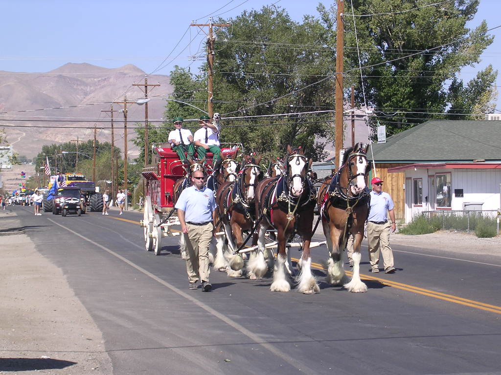 Yerington, NV: Budweiser Clydesdales in Yerington, Nevada, parade 16 August 2008