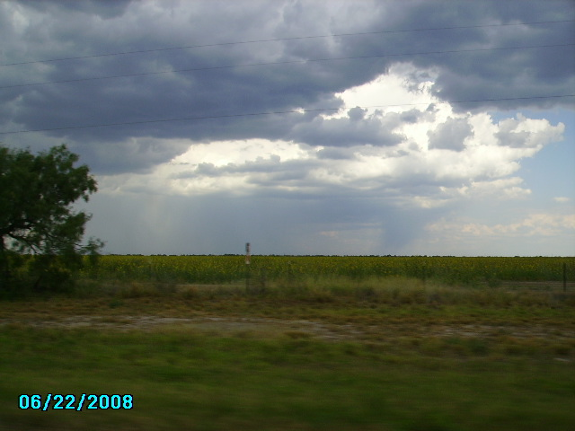 Carrizo Springs, TX : along hwy 83