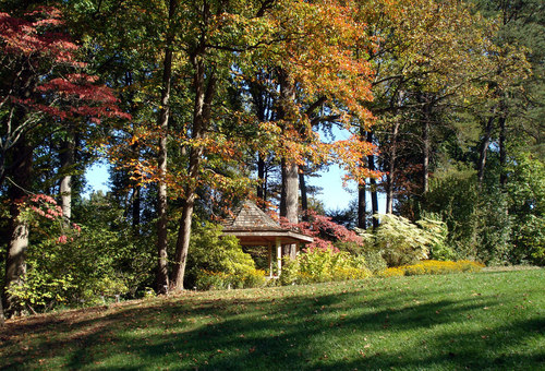 Silver Spring, MD: Fall Foliage at Brookside Gardens