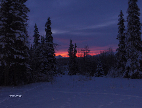Sterling, AK: This is my front yard at sunset in Sterling , Alaska on the Sterling Hwy