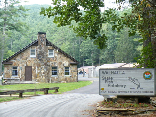 walhalla sc walhalla fish hatchery photo picture