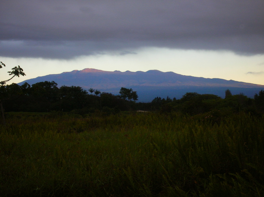 Keaau, HI : mauna loa from ainaloa going south