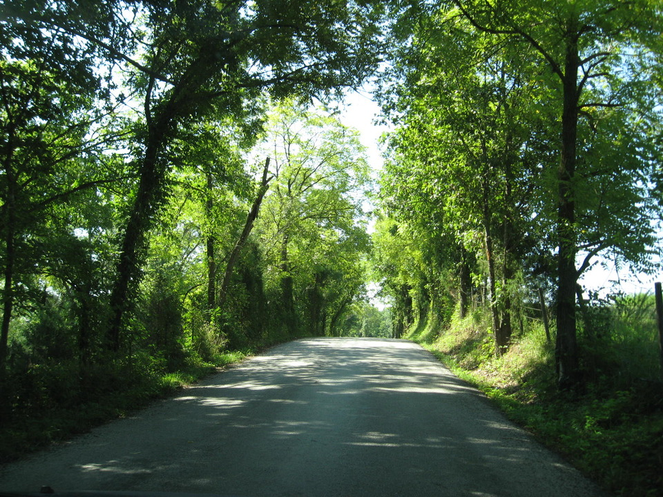 Ozark, MO : Driving through the back roads of Ozark!