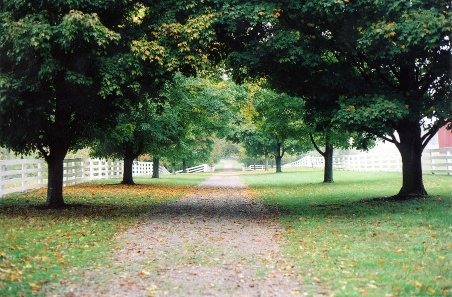 Harrodsburg, KY : Walking trail at the Shaker Village of Pleasant Hill