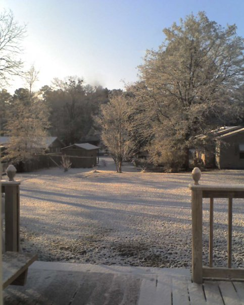 Morton, MS : My Back Yard; Morton's Great Snow in December 2009