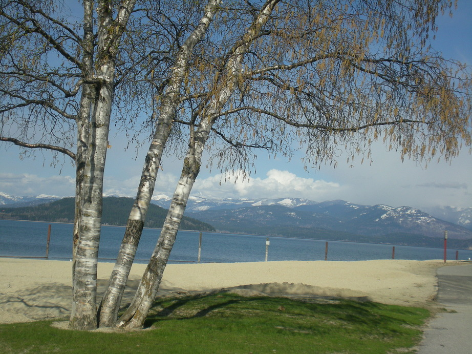 Sandpoint, ID : Sandpoint City Beach